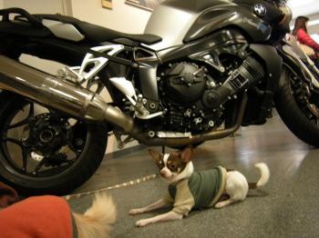 バイク屋7