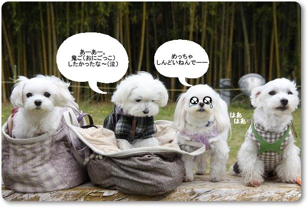 12_20110430105427.jpg