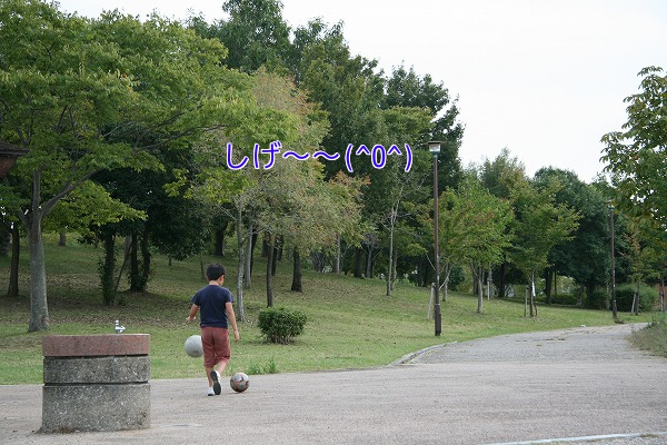 Elw1V_20101025205848.jpg