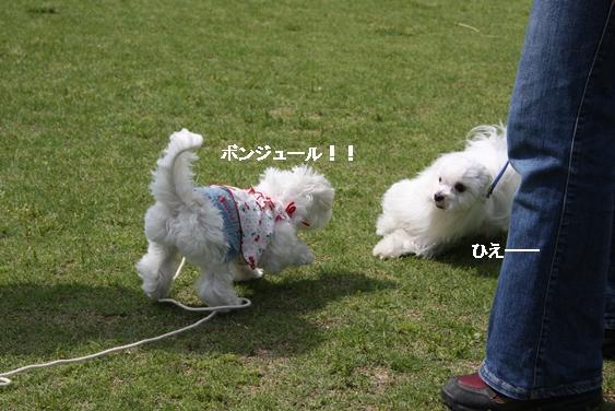 IMG_6259.jpg
