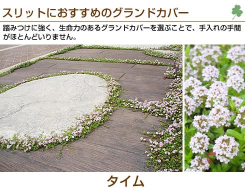 20131025_2.jpg