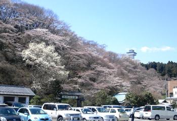 お丸山2010