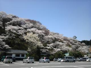 お丸山2010-1