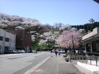 お丸山2010-2