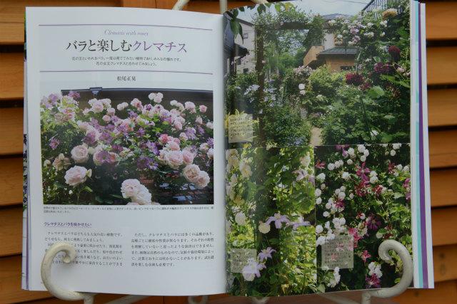 DSC_9556_01.jpg