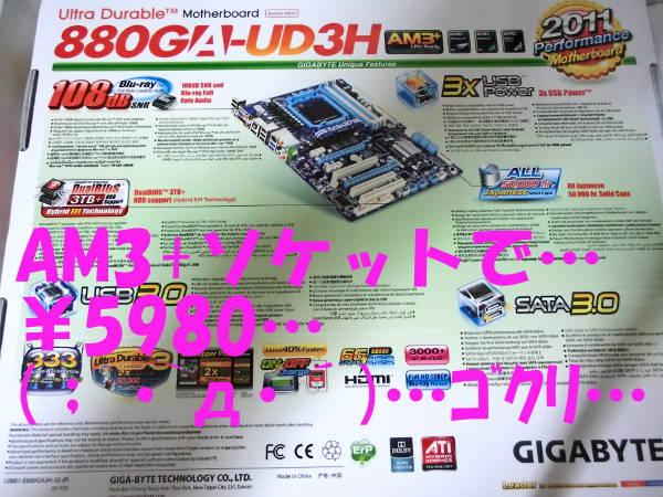 CIMG1110.jpg