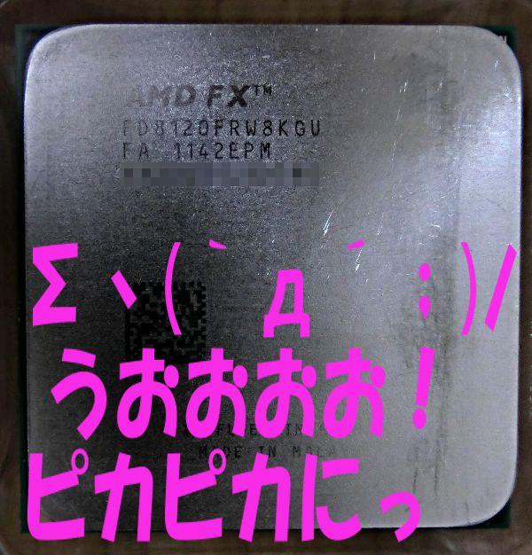 CIMG1205.jpg