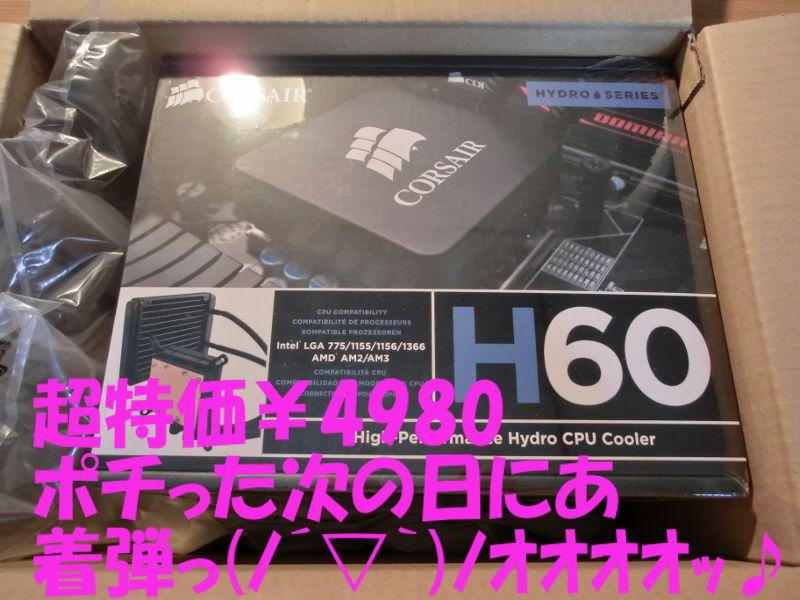 CIMG1250.jpg