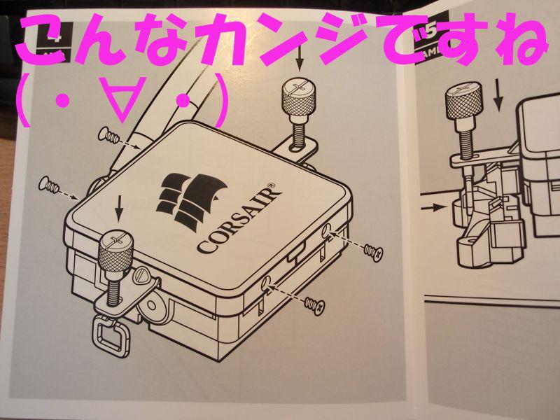 CIMG1268.jpg