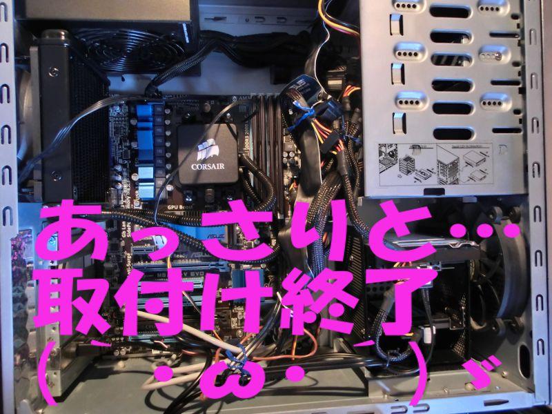 CIMG1306.jpg
