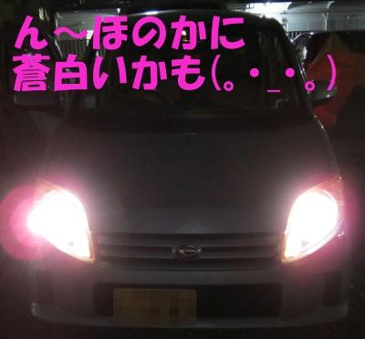 IMG_1321.jpg