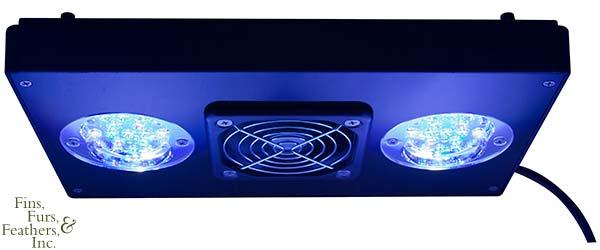 EcoTech-Marine-Radion-XR30w-LED-Light-Fixture-1.jpg