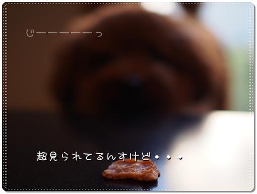 2014 09 22_6316