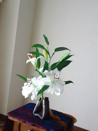 201103312.jpg
