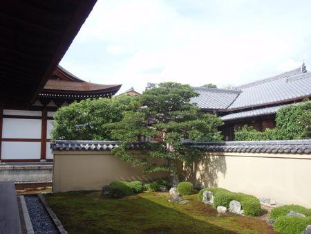kyoto7.jpg