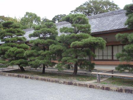 kyotoyo.jpg