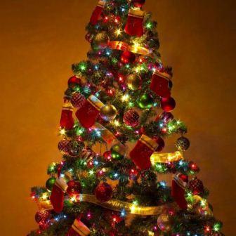 クリスマスツリー_480x480