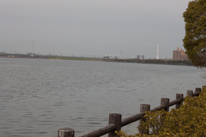 2010.3.16-11