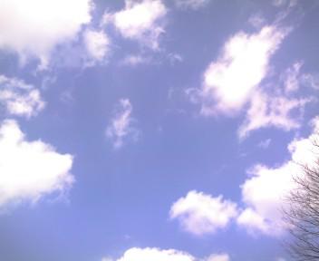 2010_0319_010.jpg