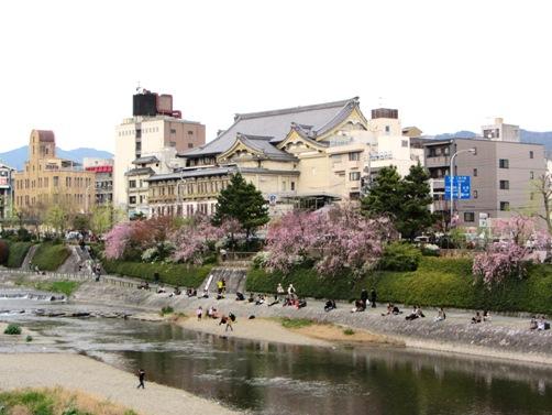IMG_3120kamogawa201303-06.jpg