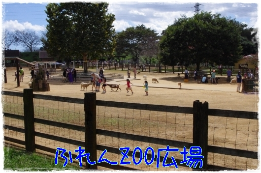 s-20110918-2.jpg