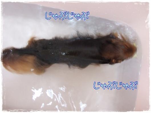s-20110925-01.jpg