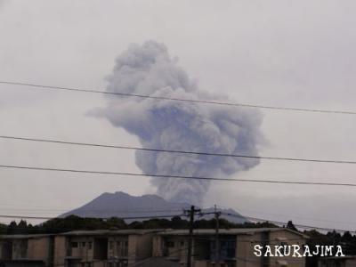 130329_sakurajima01.jpg