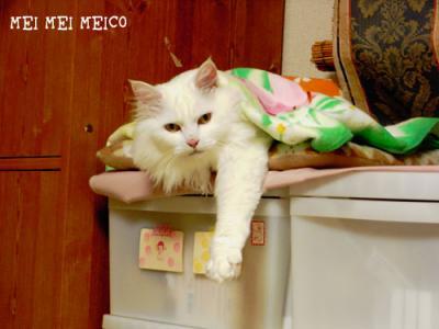 meico_130410_02.jpg