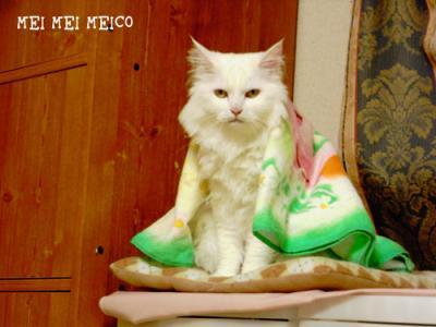 meico_130410_04.jpg