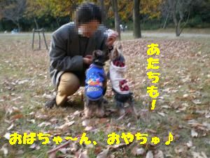 PC051066_convert_20101219224950.jpg