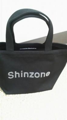 shinzone.jpg