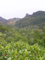 1小豆島大嶽頂上からの絶景5