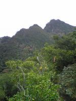 1小豆島大嶽頂上からの絶景6