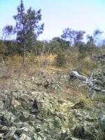 1飯野山岩場コース3