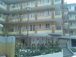 20100325.jpg