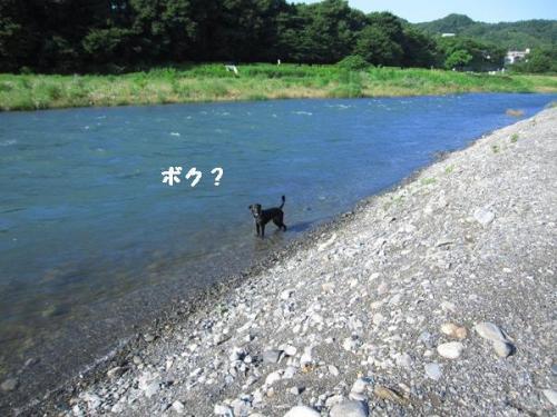 IMG_1071ぼく