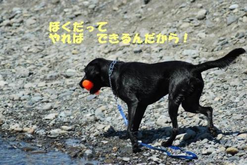 DSC_0049hamiy.jpg