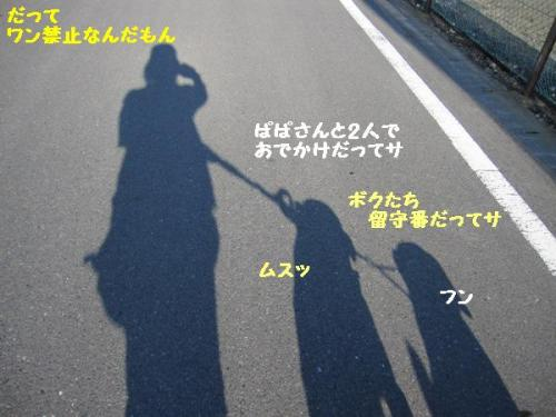 IMG_0620.jpg