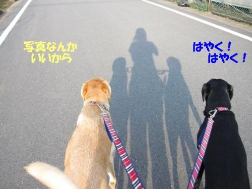 IMG_1624_20100921095922.jpg