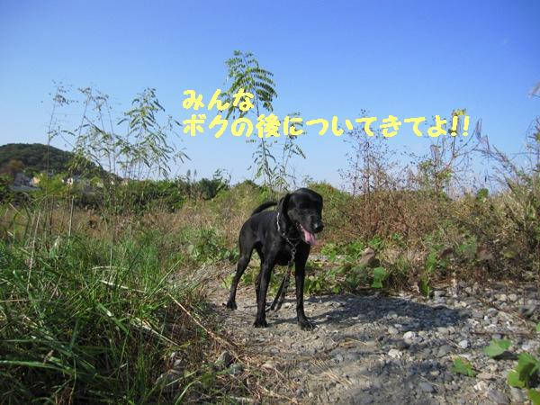 IMG_2211.jpg