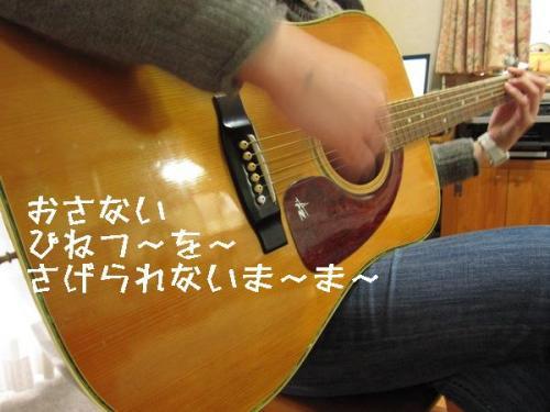 IMG_2415.jpg