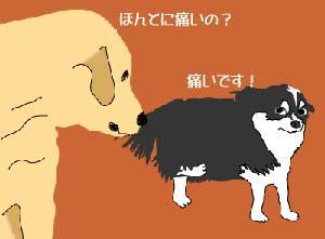 5-11-h-足-3
