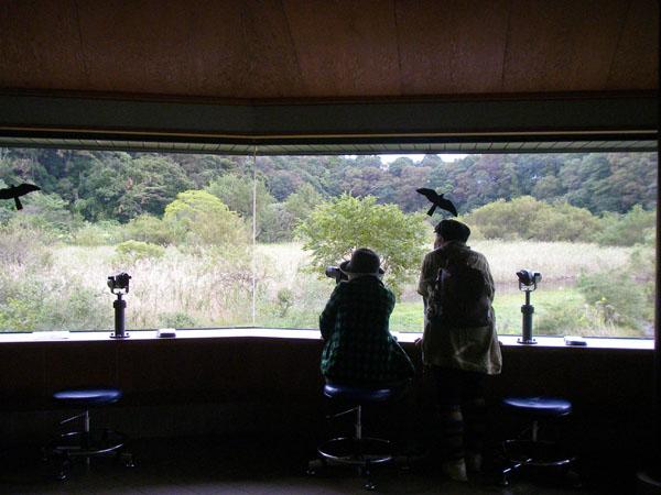 N森の自然観察舎