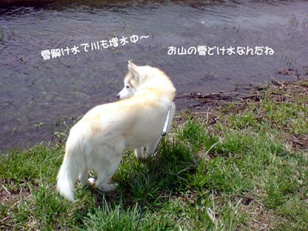 3_20100508004129.jpg