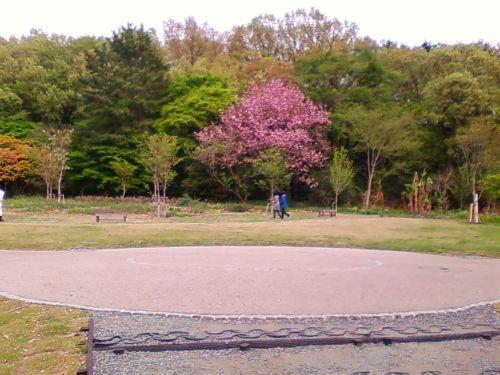 俣野別邸庭園4