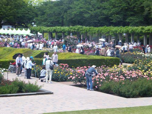 神代植物公園3