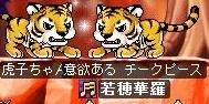 Maple120206_203929.jpg