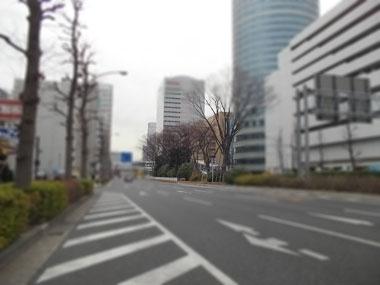201212286.jpg