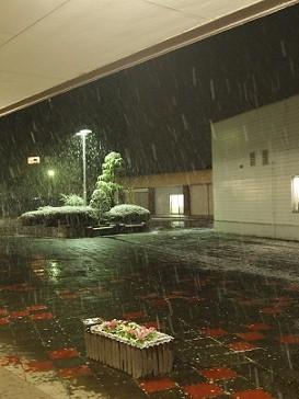 雪が降ってきたところ