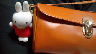 with Miffy